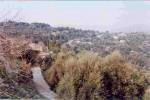 Η γειτονιά Βεριβιανά στην είσοδο – βορειοανατολική πλευρά – του χωριού. Η μεγαλύτερη σε έκταση γειτονιά, με τα σπίτια, κτισμένα σε αμφιθεατρική διάταξη, να έχουν θέα τα πανύψηλα Λευκά Όρη.